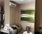Green World moschito mahovina (5)