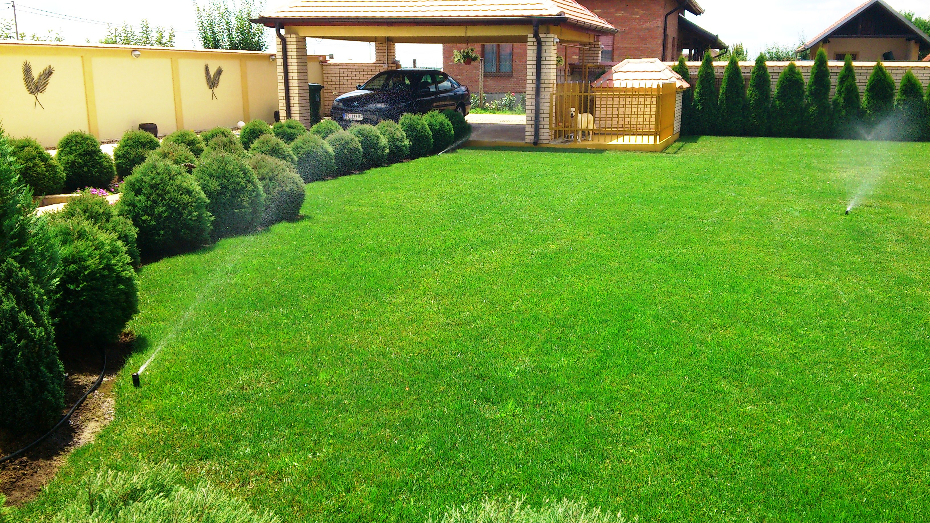 Saveti kako do kvalitetnog travnjaka  Green World
